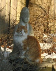 Old Guy and Quan Yin Photo by Cindy Read